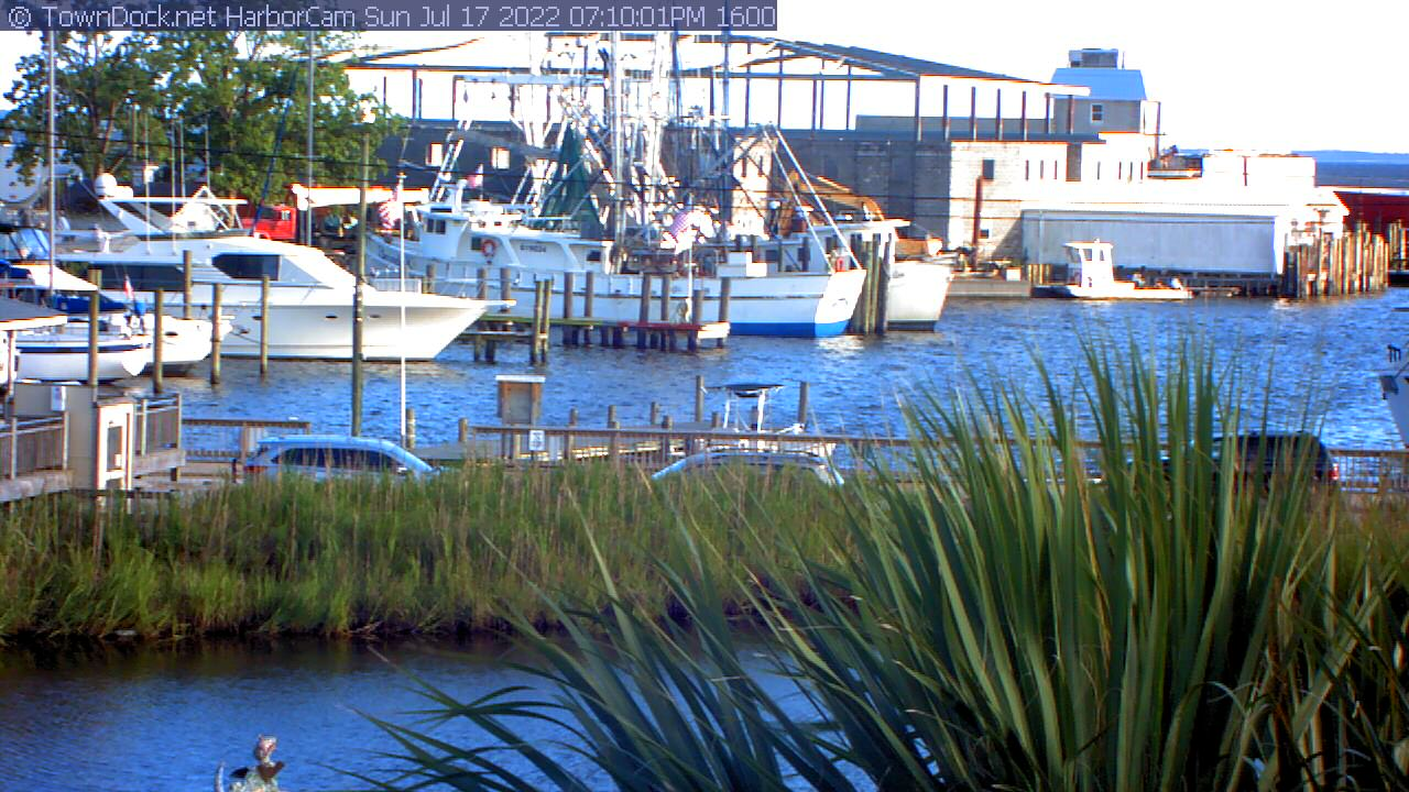 HarborCam | TownDock net | Oriental NC News, Weather, Photos